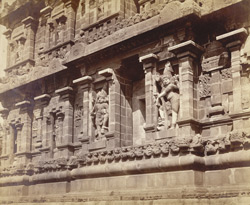 Curious figures on bas-relief, [Brihadishvara Temple], Tanjore.